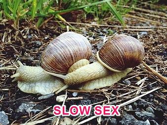 site pour sex asse