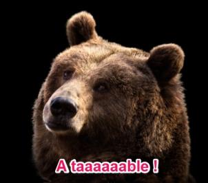 pilar-lopez-be-your-best-coaching-sophrologie-formation-conseil-75018-feuilleton-été-2015-ours-grizzly-a-table