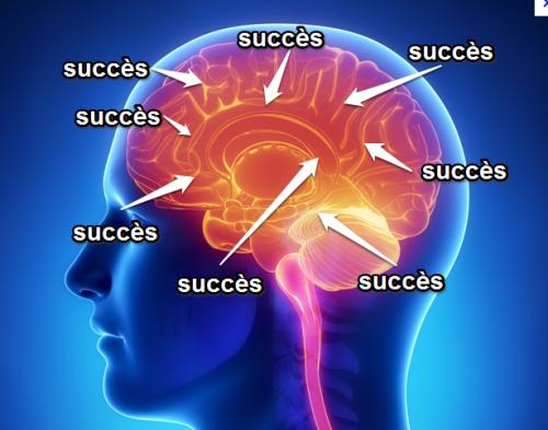 pilar-lopez-coach-sophrologue-therapie-constellation-business-75018-bonne-année-2016-succès-cerveau-souvenir