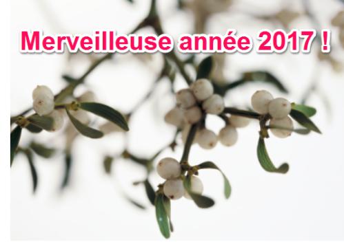 pilar-lopez-coach-sophrologue-therapie-constellation-business-75018-bonne-annee-2017-happy-new-bonne-annee-2017